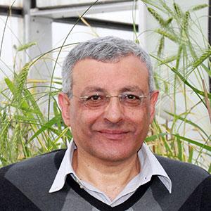 Tzion Fahima